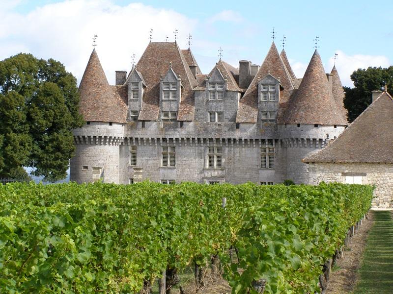 Top Bordeaux Wine Tours