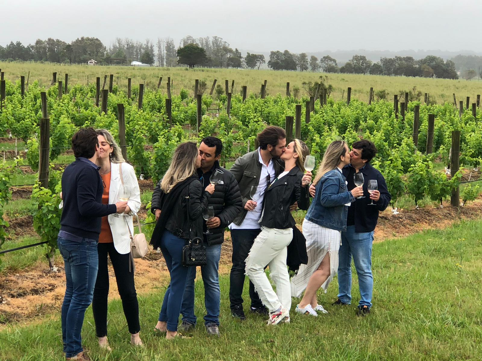napa valley wine tour